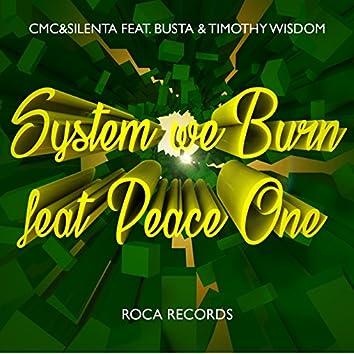 System We Burn (feat. Timothy Wisdom, Busta & Peace One)