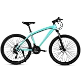 Mountain Bike Bicycle, City Road Bike Adult Car 27-Speed Bicycle Off Road Double Disc Brake Shock Absorption Bicycles for Men and Women,A,26 Inch