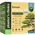 Bonsai Tree Growing Kit - Grow 4 Indoor Bonsai Trees - Plant a Garden from Seeds - Unique Gardening Gifts for Women & Men Gardeners : Unusual Gift Ideas - Adults Gardener Gifts : Plants Starter Kit