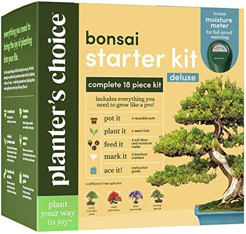Bonsai Tree Growing Kit Grow 4 Indoor Bonsai Trees Plant a Garden from Seeds Unique Gardening product image