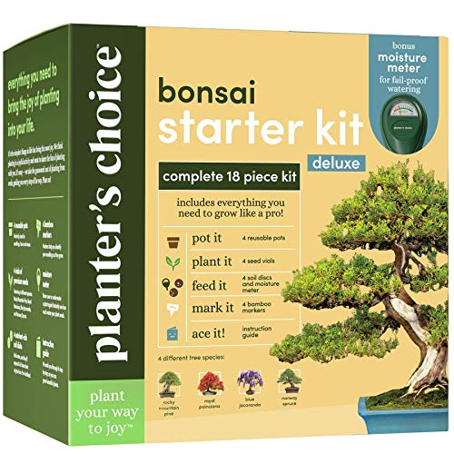 Bonsai Tree Growing Kit - Grow 4 Indoor Bonsai Trees - Plant...