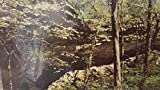 Giant City State Park (Devil's Stand Table Trail) POST CARD, Photo by Mike...