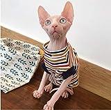 ZHIHAN T-Shirt Casual sfilata di Gatto Senza Pelo a Strisce sfilate Primavera Estate, XL, Colore 1