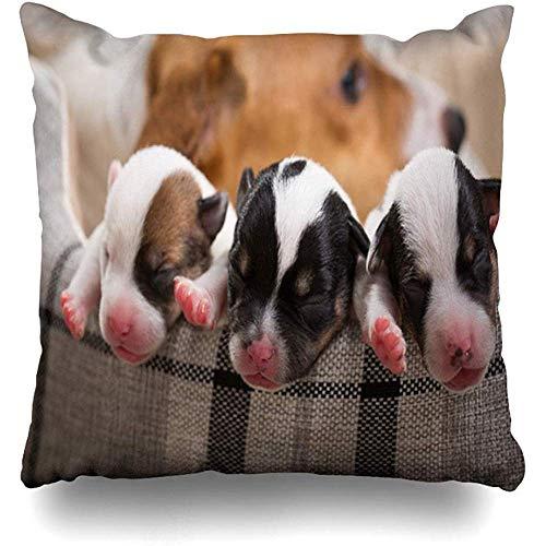 L.R.D 18X18inch Kissenbezug Stillen Baby Hund füttert Welpen Neugeborene Rasse Jack Welpenwoche Geborene Muttermilch Brut Kissenbezug Kissenbezug