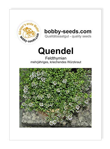 Quendel-Feldthymian Kräutersamen von Bobby-Seeds Portion