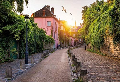 HD 7x5ft Vinyl Montmartre District of Paris Street Spring Scenery Photography Background Narrow Road House Ivy Twilight Scenery Backdrop Party Kid Baby Adult Portrait Photo Studio Props