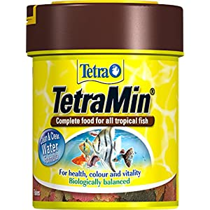 Tetra Min Fish Food Flakes, Complete and Varied Food for All Tropical Fish, 66 ml/13 g