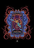 hendrix Jimi Hendrix- Psychedelische Electric Ladyland Textilposter 30 x 40 Zoll