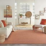 Nourison Positano Flat-Weave Indoor/Outdoor Terracotta 8' x 10' Area Rug , 8' x 10'