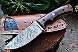 Bobcat Knives Custom Handmade Bushcraft Hunter Skinner EDC Knife Damascus Steel (Wild Cat)