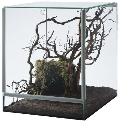 Glasterrarium mit Falltür, 25x30x30 cm