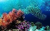 Rompecabezas para Adultos 3000 Pieza de Madera de Arrecife de Coral y Escuela de Peces para Adolescentes y Adultos, Muy Buen Juego Educativo 122x81cm