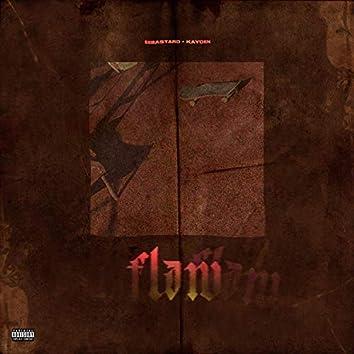 Flaw (feat. sorrykayden)