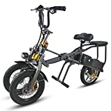 LHLCG Scooter 48V 350W Mini-Tricycle 2 Batteries Pliable Tricycle électrique 14 Pouces 1 Seconde...