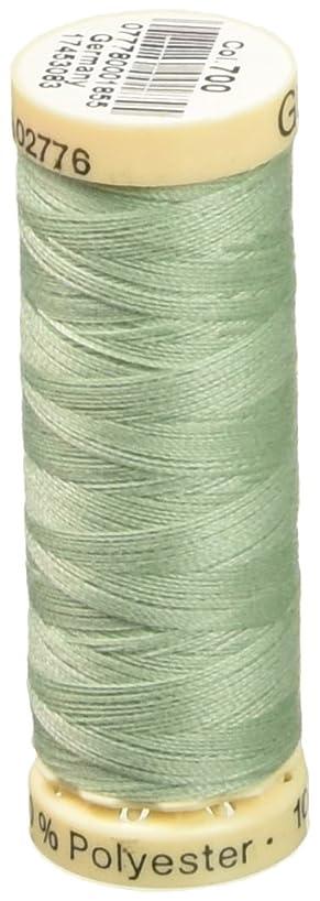 Gutermann Sew-All Thread 110 Yards-Mint Green