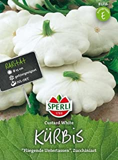 Sperli Kürbis Custard White