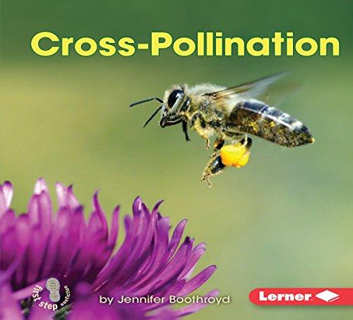 Cross-Pollination copertina