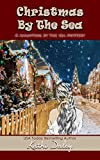 Christmas by the Sea (Haunting By The Sea Book 6)