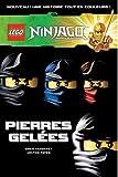 LEGO NINJAGO BD 5 PIERRES GELEES