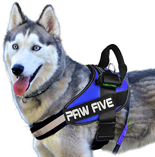 Paw Five Reflective Core-1 No-Pull Dog Harness