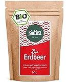 Polvo de fresa Bio 90g liofilizado - Fragaria - Superfood - vegano, sin lactosa, sin soja - bolsa de almacenamiento resellable