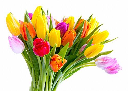 Consegna Mazzo fiori freschi 20 tulipani Bouquet