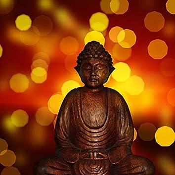 Compilación Calmante De 35 Pistas Para Un Ambiente Meditativo