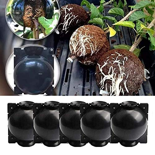 5Pcs Air Layering Plant Boxes, Plant Rooting Box Root Grafting Ball , Plant Propagation Tools, Root Pods Gardening, Root Controller for Indoor Outdoor Plants, Reusable Plant Rooting Device (M)