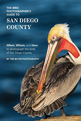 The Bird Photographer's Guide to San Diego County: When, Where, and How to photograph the birds of San Diego County