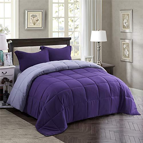 Soft All Season Comfy, Quilted Down Alternative Comforter Duvet Insert-Lightweight (Purple/Grey, Queen)
