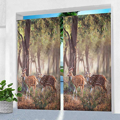 Pro Space Indoor/Outdoor Curtain for Patio - 50' x 84' Two Deer Printed Waterproof Window Drape Rod Pocket Top Curtains Panel for Pergola, Porch or Balcony