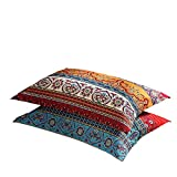 LELVA Boho Pillow Cases Set of 2 Piece Queen Standard Colorful Bohemian Striped Pillowshams 100% Cotton Brushed Pillow Covers Pillow Protectors 20' x 30' Pattern# 1