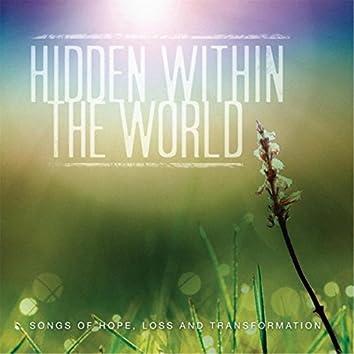 Hidden Within the World