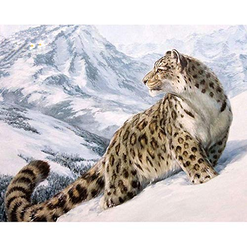 YAXIANXU Pintura por Números para Adultos Y Niños Principiante para ,con Pinceles Y Pinturas Se Puede Utilizar como Regalo Y Decoración del Hogar-Leopardo De Nieve 40 X 50 Cm Sin Marco