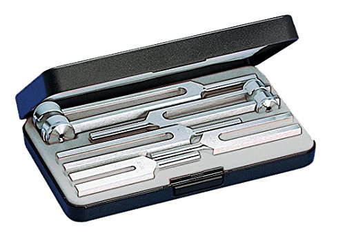 Riester 5142 Conjunto de diapasones III, 5 diapasones de alumin en estuche de plástico