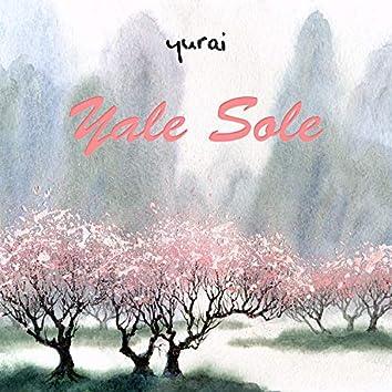 Yale Sole
