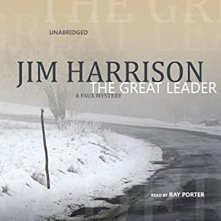 The Great Leader audiobook cover art