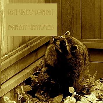 Bandit Untamed