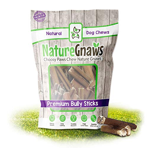 Nature Gnaws Bully Stick Bites for Small Dogs - Premium Natural Beef Bones - Bite Sized Dog Chew Treats for Light Chewers - Rawhide Free - 2-3 Inch (30 Count)