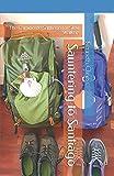 Sauntering to Santiago: The Camino de Santiago for Slow Walkers