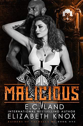 Malicious: A Nomad Biker Novel (Raiders of Valhalla MC Book 1) (English Edition)