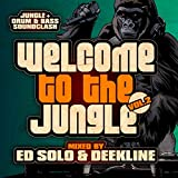 Welcome To The Jungle, Vol. 2: The Ultimate Jungle Cakes Drum & Bass Compilation