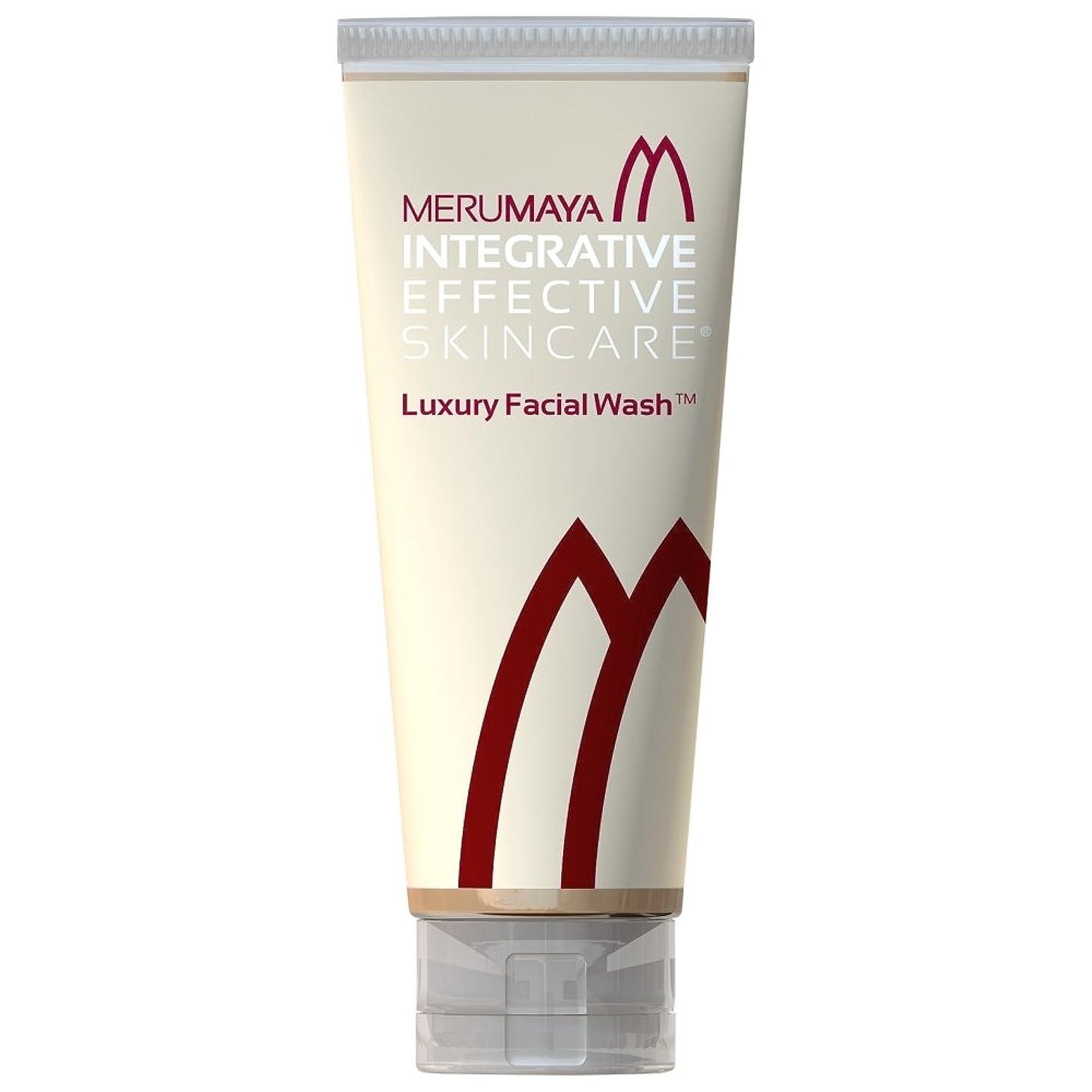 加速度札入れ同僚Merumaya高級洗顔?、100ミリリットル (Merumaya) - MERUMAYA Luxury Facial Wash?, 100ml [並行輸入品]