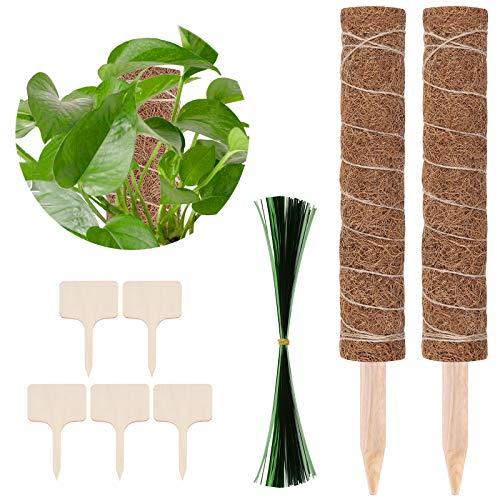 Teamkio 2 Stück Moosstab Verlängerbar Pflanzstab 70CM Plant Stake Plant Pole Natürlicher Rankhilfe Pflanzstab Kokos Blumenstab mit 5 Wooden Labels, 100+ Ties Kokosstab Rankstab