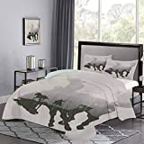 Western Duvet Cover Queen Size, Western Theme Cowboy Chasing Wild Horse in The Desert Rodeo Cowboy Theme Bedding Sets, Pale Grey Dark Green