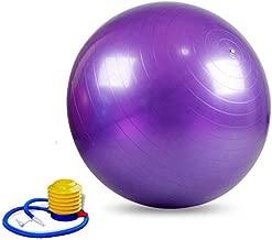Physio balance yoga fitness 95cm gym exercise Aerobic Ball inflatable with PUMP Purple
