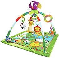 Deluxe new-born gym with 10+ toys and activities and a removable, take-along toucan with music and dancing lights Three ways to play: Lay & play, tummy time and take-along Responds to baby's movement with music and lights in short-play setting Up to ...