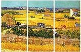 1art1 Vincent Van Gogh - La Cosecha, Llanura De Crau Cerca De Arles, 1888, 3 Partes...
