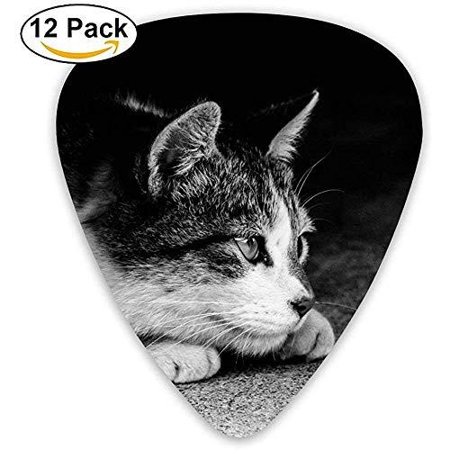 Sherly Yard Careful Cat Púas de guitarra personalizadas para acústica eléctrica Los mejores obturadores Regalos (paquete de 12)