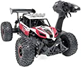 Kids RC Car 1/14 - Rynal Fast Remote Control Racing Car, 2.4 Ghz Off-Road RC Trucks with 2 Rechargeable Batteries (Red)